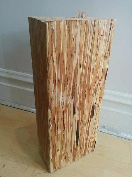 File:Parallam Parallel strand lumber.jpg
