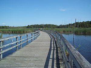 Bois-de-l'Île-Bizard Nature Park - Image: Parc nature du Bois de l ile Bizard 66
