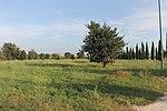 Parco archeologico di Centocelle 07.jpg