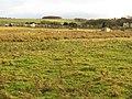 Pasture at Netherton House entrance - geograph.org.uk - 1592607.jpg