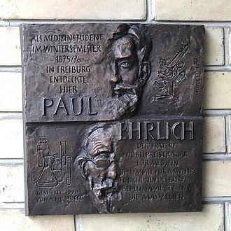 Paul Ehrlich - Commemorative plaque at the entrance of the anatomy institute of Freiburg Univeristy where Paul Ehrlich, as a medical student in the winter semester 1875/76, discovered the mast cells.