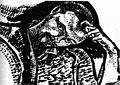 クレーの自画像(1911)