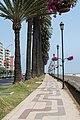 Peatonal Avenida Marina, Viña del Mar 20200120 51.jpg