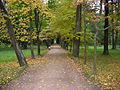 Peterhof avenue in Bottom park 4 oct 2004.jpg