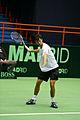 Philipp Petzschner Davis Cup 06032011 1p.jpg