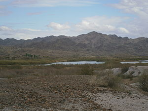 Picacho State Recreation Area.JPG