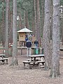 Picnic and play area, Swinley Forest, Bracknell - geograph.org.uk - 729308.jpg