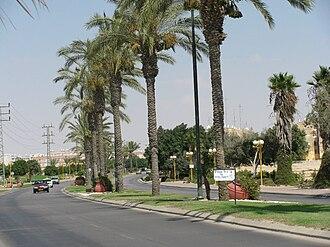 Dimona - Palm boulevard in Dimona