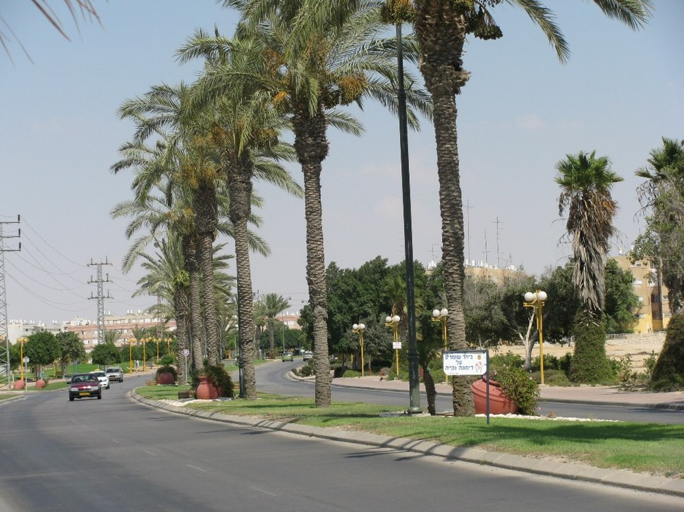 PikiWiki Israel 4566 Dimona renewal