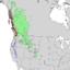 Pinus contorta subspecies range map 1.png