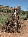 Pipe Springs National Monument, Arizona (8) (3733752413).jpg
