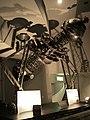 Planetarium osaka city museum.jpg