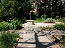 Jard n bot nico de la universidad de valencia wikipedia for Jardin botanico medicinal