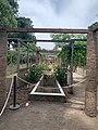 Pompei 17 08 17 509000.jpeg