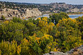 Pompeys Pillar NM (9421736537).jpg