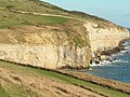 Portland cliffs east of Dancing Ledge - geograph.org.uk - 268635.jpg