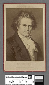 Portrait of Beethoven (4674311).jpg