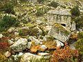Portugal Parque Natural do Alvão (23600700051).jpg