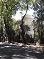 Portuguese Embassy, Buenos Aires.jpg