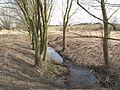 Potok u Dobré Vody (2).jpg