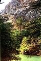 Preveli Palms.jpg