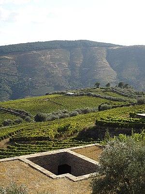 Sabrosa - The landscape in the civil parish of Provesende