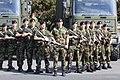 Pte Eoin Larkin Kilkenny Hurler (4951364941).jpg