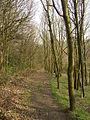 Public footpath parallel to Rookes Lane, Hipperholme - geograph.org.uk - 390945.jpg