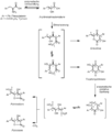 Pulvinon Biosynthese.png