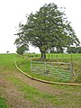 Pumping out the slurry, Holmehead (2) - geograph.org.uk - 548251.jpg