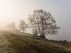 Put van Nederhorst in de mist. 28-02-2021. (d.j.b) 31.jpg