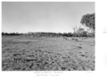 Queensland State Archives 5336 Watering facility Pottabilla Cunnamulla Hungerford January 1955.png