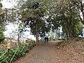 Quinta do Monte, Funchal, Madeira - IMG 6367.jpg