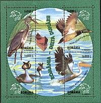 Danube Delta Fauna