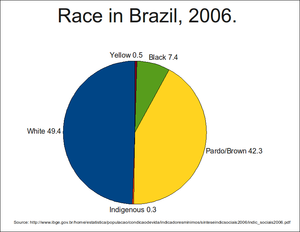Race and ethnicity in Brazil - Pie chart of race in Brazil in 2006.