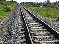 Railway Rīga-Valga - panoramio.jpg