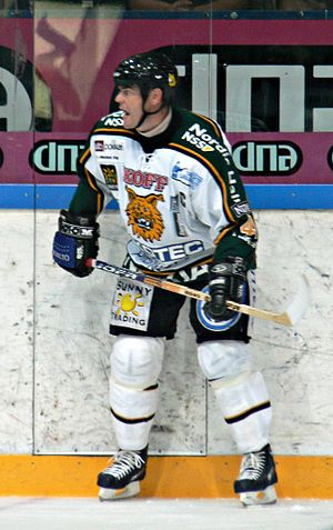 Raimo Helminen - Image: Raimo Helminen Ilves