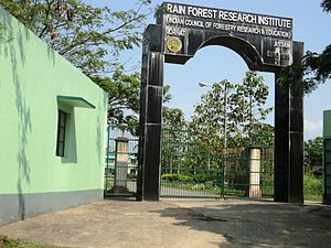 Rain Forest Research Institute - Main entrance of Rain Forest Research Institute