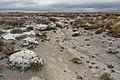 Rangipo Desert 14.jpg