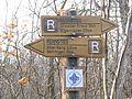 Rennstieg Schild am Alten Berg.jpg