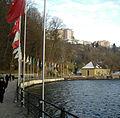 Rheinfallflag.jpg
