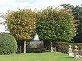 Rhinefield, fruit trees - geograph.org.uk - 1010624.jpg