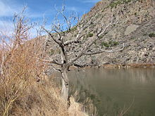 Rio Grande, Bandelier National Monument, NM.jpg
