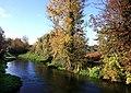 River Colne at Uxbridge.jpg