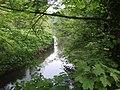 River Stour - upstream at Hyde Farm - geograph.org.uk - 798646.jpg