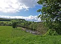 River Swale - geograph.org.uk - 1390938.jpg