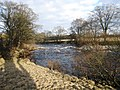 River Tees near Leekworth - geograph.org.uk - 1758490.jpg