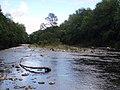 River island, North Esk. - geograph.org.uk - 467833.jpg
