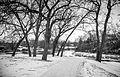 Riverside Park, Cannon Falls (15884057824).jpg