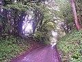 Road by Vann Farm, Empshott - geograph.org.uk - 165918.jpg